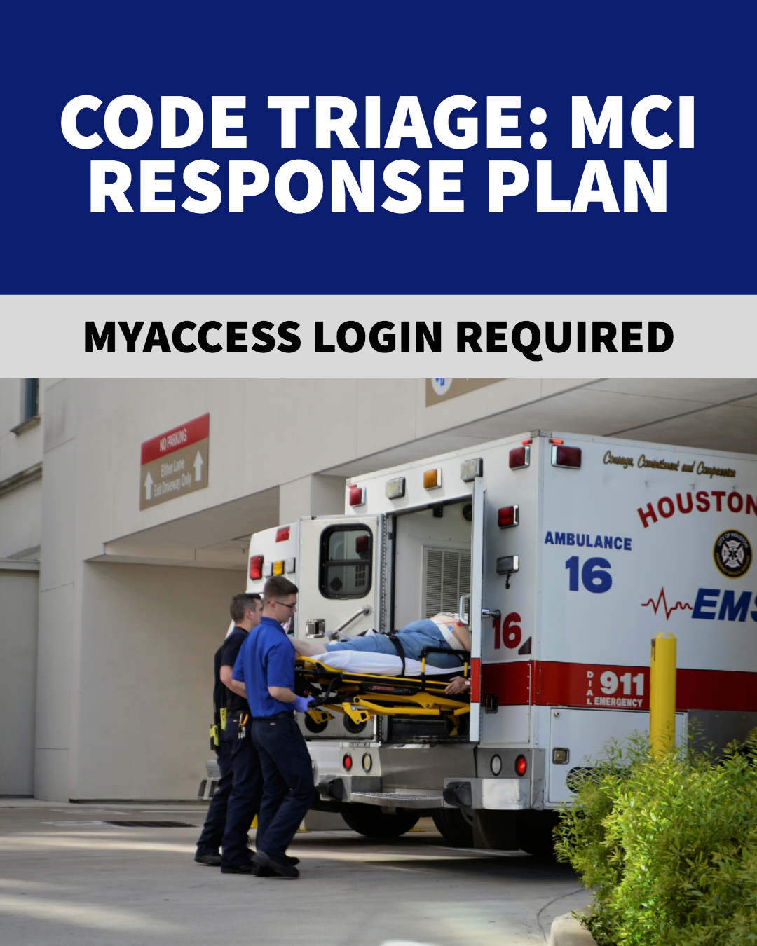 Code Triage Response Plan